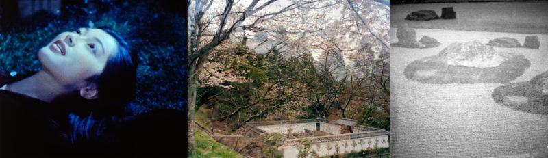 LD-Kyoto1997-30815