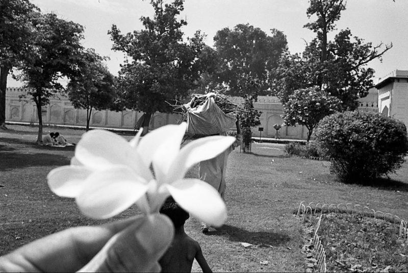 LD-Peshawa 1996-1003