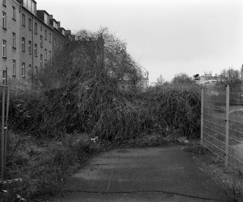 LD-Berlin 2000-201135620