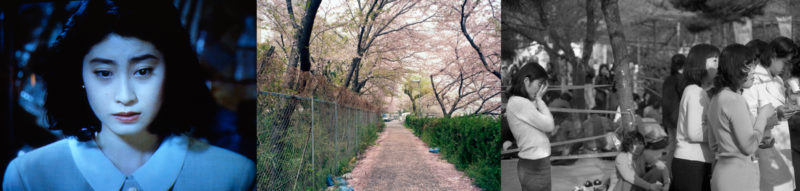LD-Kyoto1997-3089