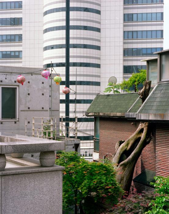 LD-Seoul 2009-2956