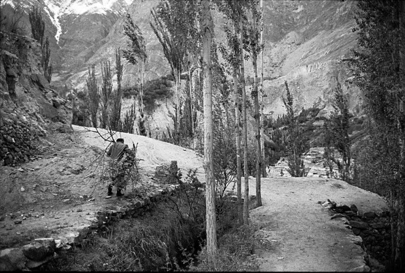 LD-Pakistan-1006